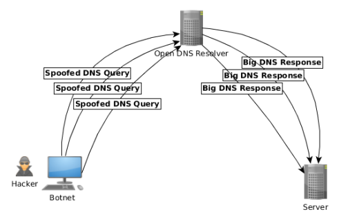 dns amplification